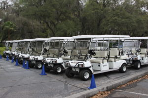 Golf Carts for Sale Near Me