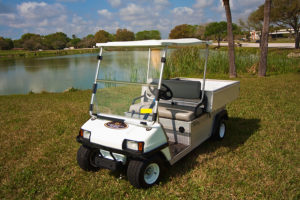 rent a golf cart