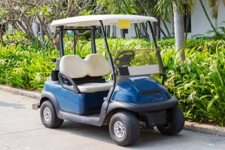 West Palm Beach Golf Cart Rentals
